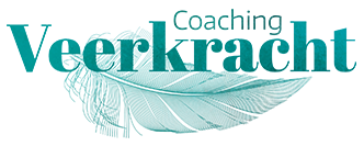 Coaching Veerkracht